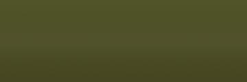 Fiat 335 color